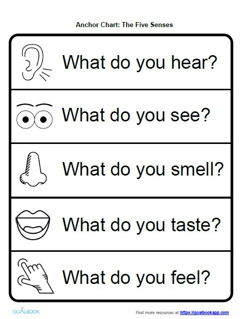Five Senses Anchor Chart